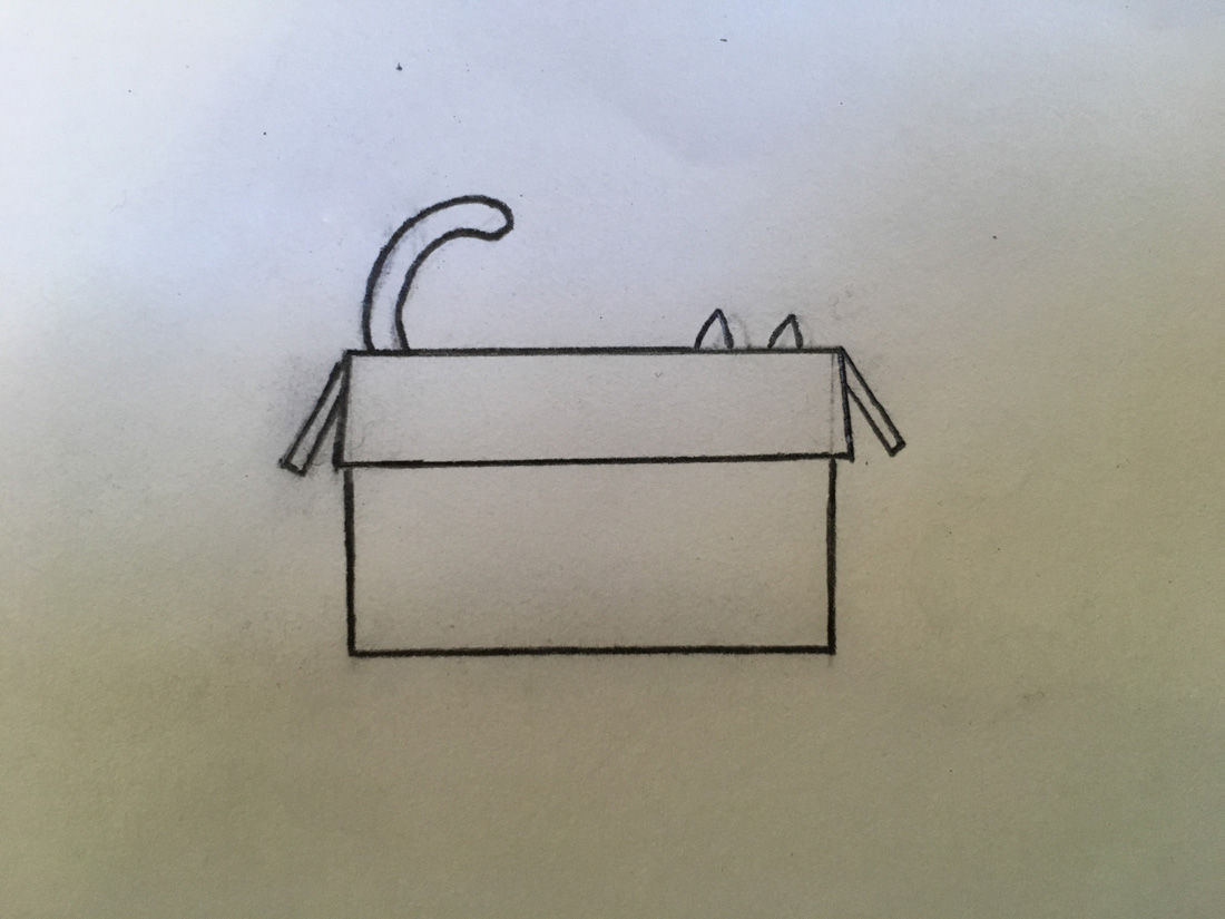 Box Cat Sketch