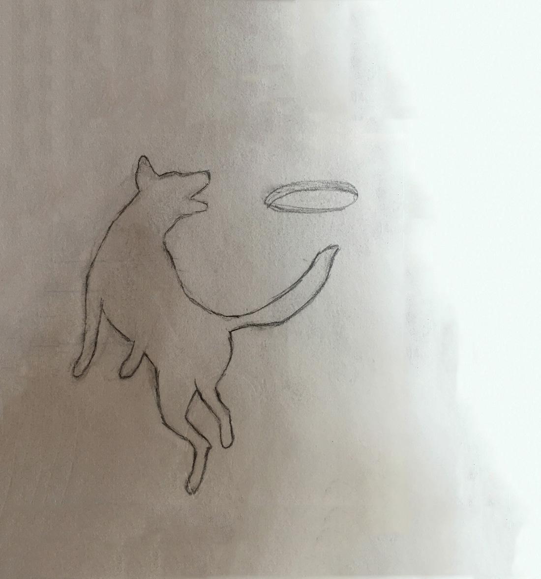Frisbee Dog Sketch